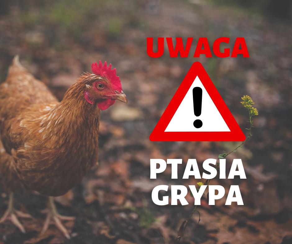 Rozporządzenie Wojewody Śląskiego w sprawie zwalczania wysoce zjadliwej grypy ptaków