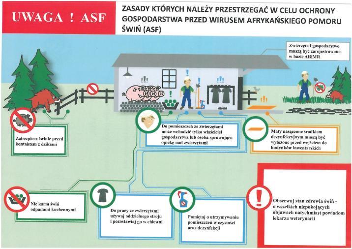 ASF - ważne informacje