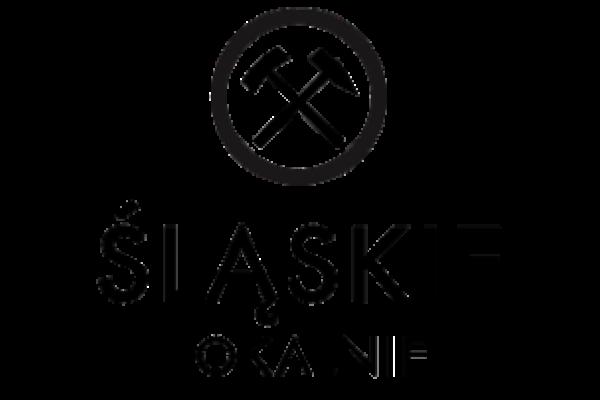 Konkurs FIO  Śląskie Lokalnie 2021-2023